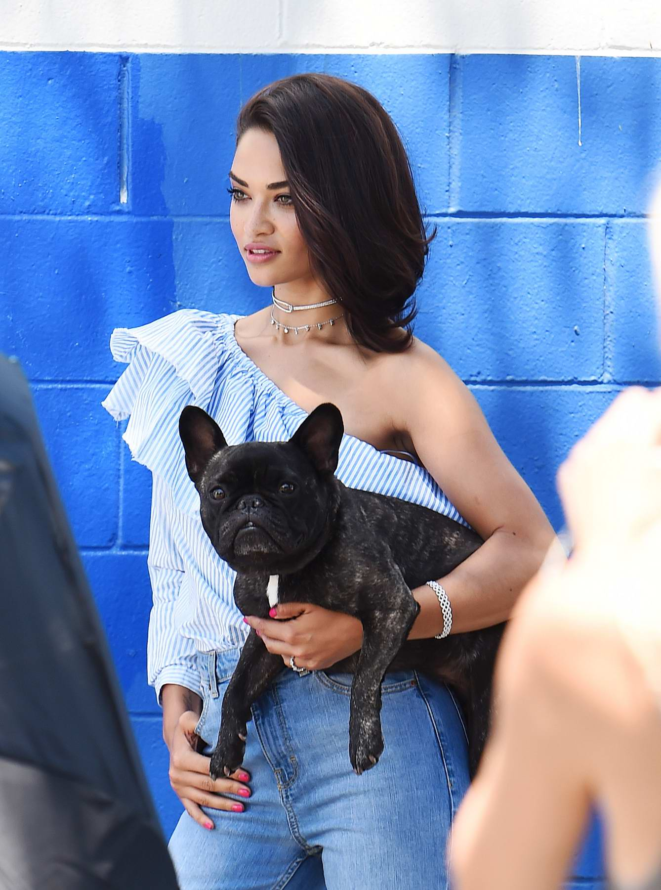 Shanina Shaik carries her Dog in hand at a Photoshoot in Los Angeles
