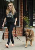 Amanda Seyfried walks her dog in Woodland Hills, California