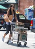 Jordana Brewster shopping at Whole Foods in Los Angeles