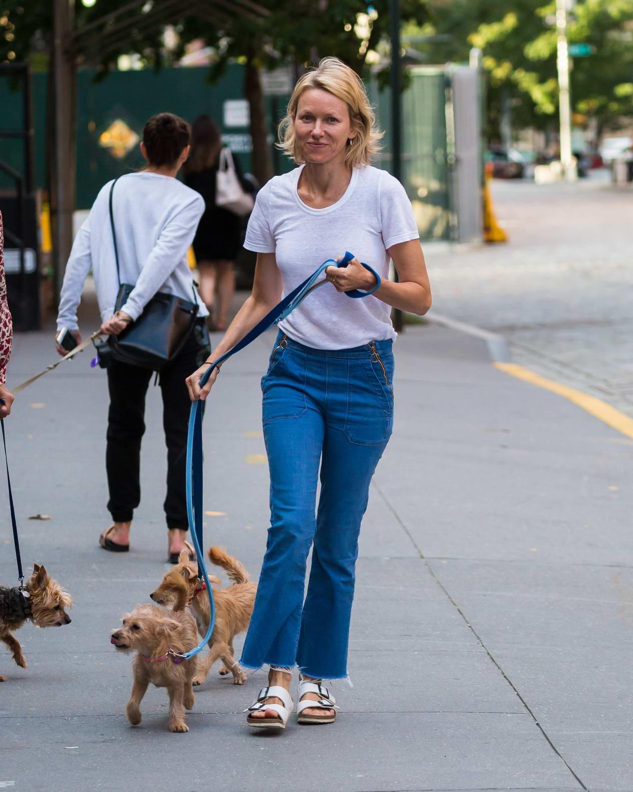 Naomi Watts seen walking her puppies in TriBeCa in New York City