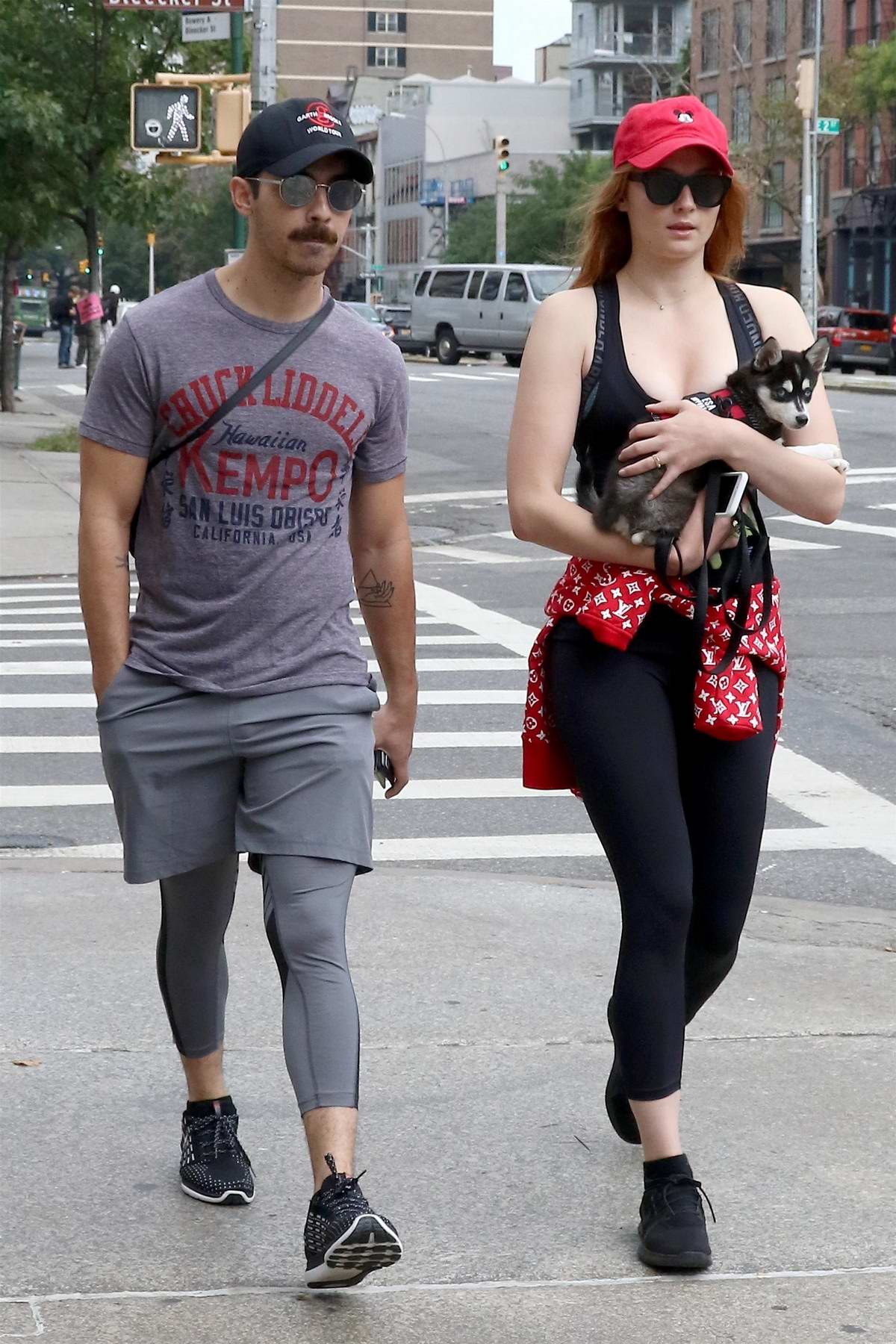 Sophie Turner and Joe Jonas out with their dog in New York