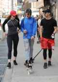 Sophie Turner and Joe Jonas taking their dog for a walk in New York