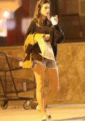 Alessandra Ambrosio shopping with her family for Halloween in Los Angeles