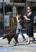 Angelina Jolie spends her sunday taking her son and dogs to the pet store in Los Angeles
