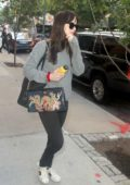 Dakota Johnson leaving her hotel with a dragon print purse in New York