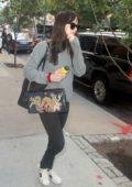 Dakota Johnson leaving her hotel with a dragon print purse in New York