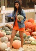 Kourtney Kardashian buy pumpkins for Halloween in Moorpark, California