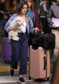 Lucy Hale her dog arrives back to Vancouver after visiting her family in Memphis