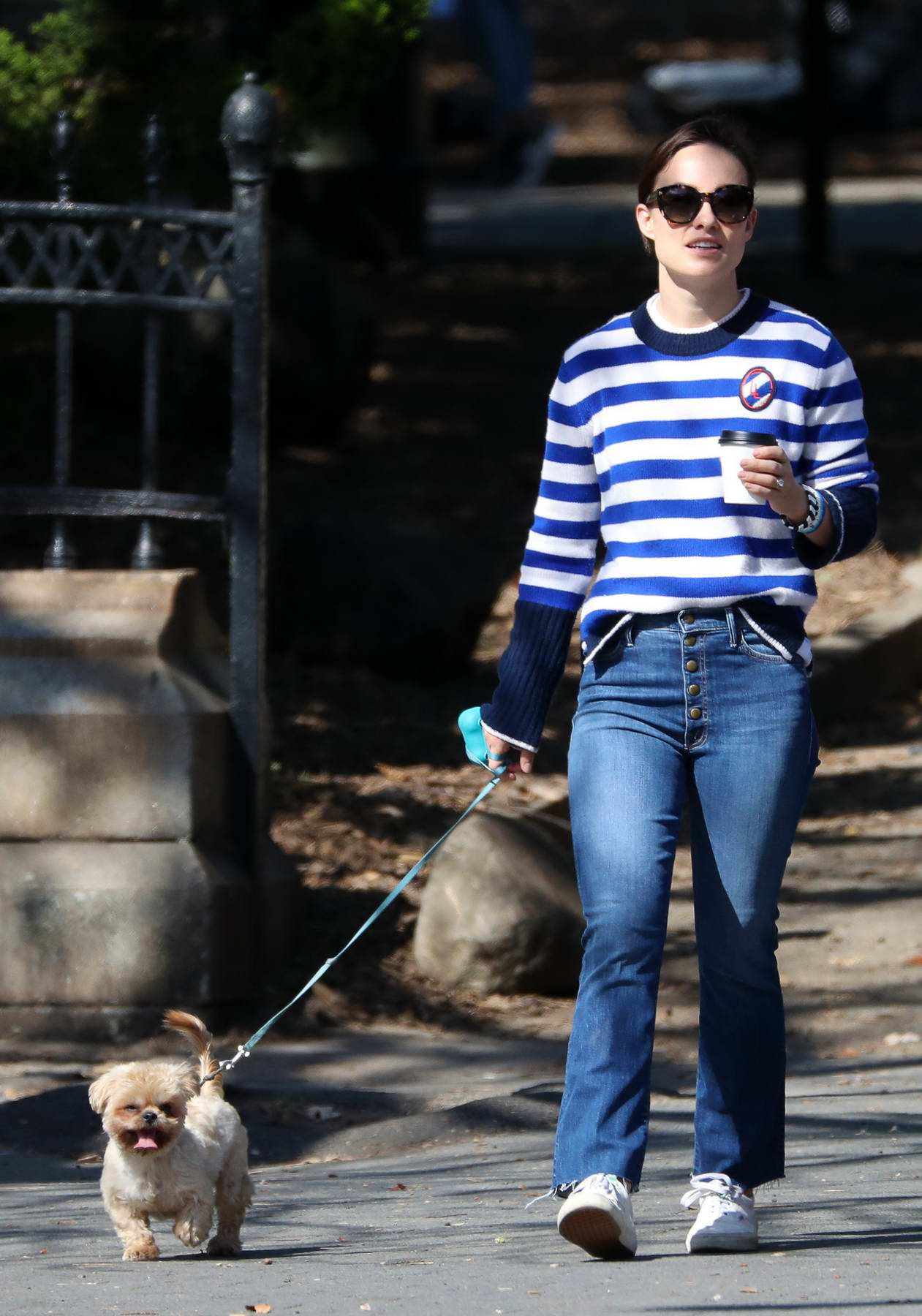 Olivia Wilde is spotted walking her dog with a friend in New York City