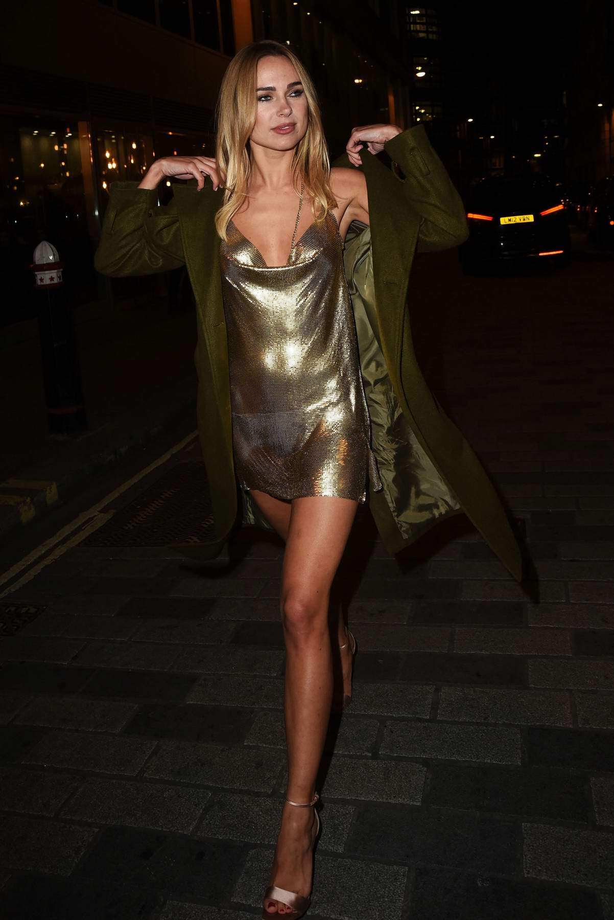 Kimberley Garner at the launch of The Winter Forest with Ciroc in London