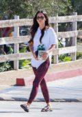 Megan Fox carrying a pack of beers bottles while out in Malibu, California