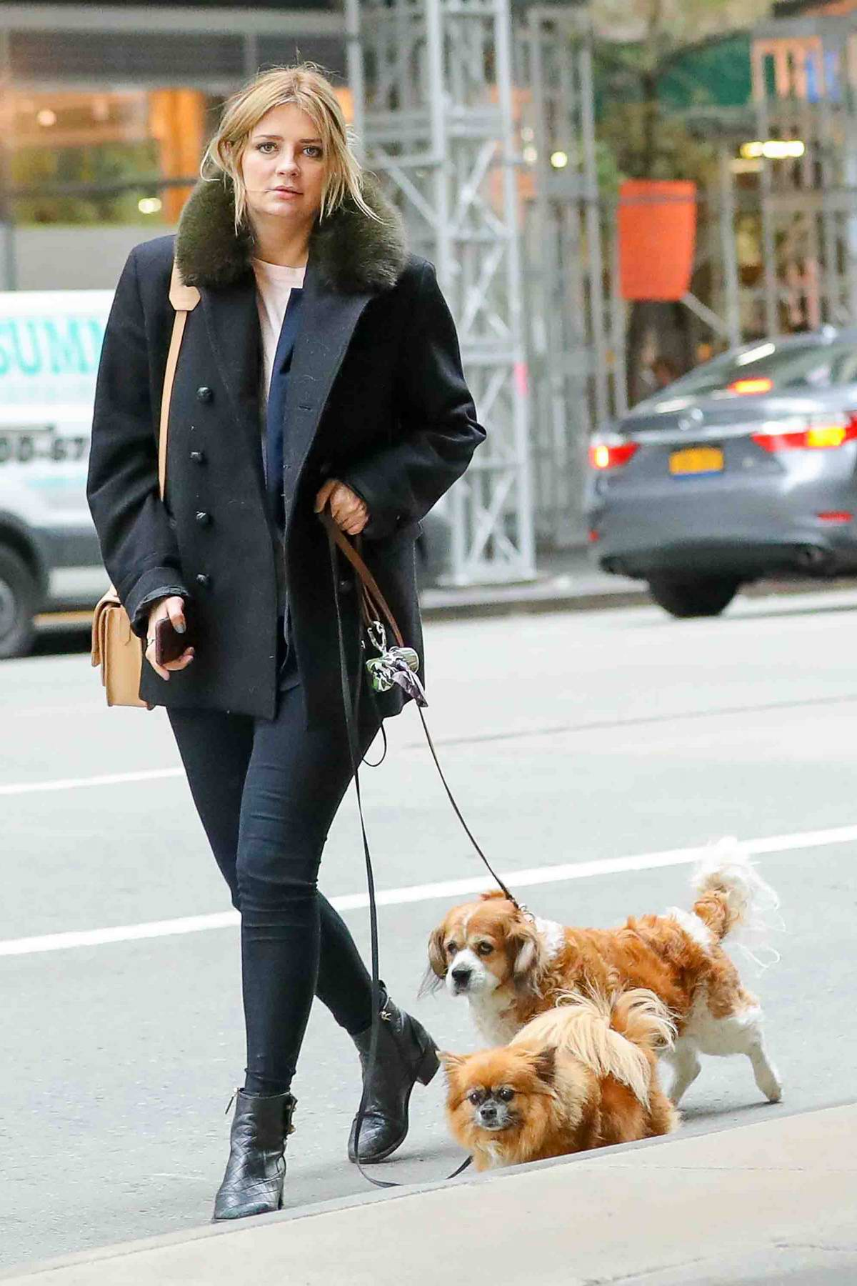 Mischa Barton was spotted with her dogs after visiting the City National Bank branch in New York City