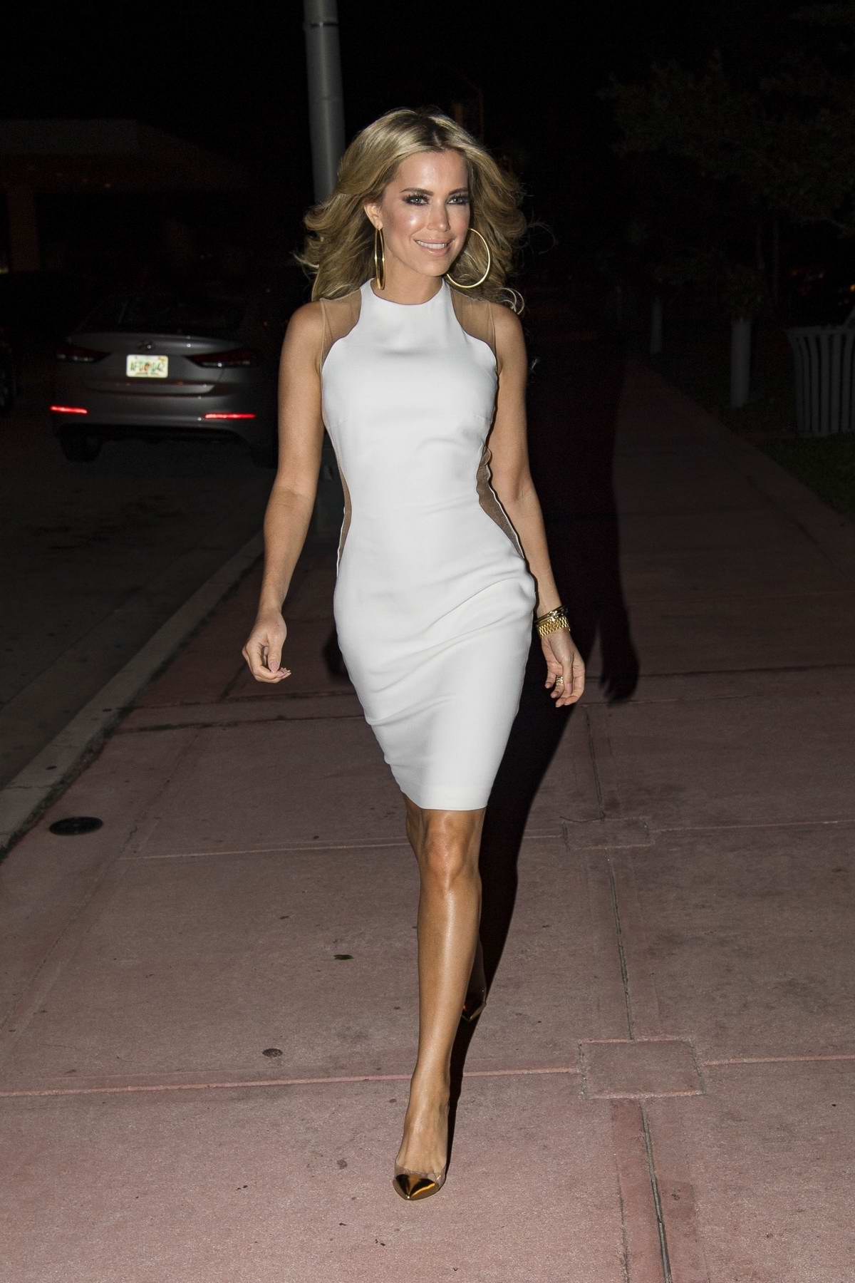 Sylvie Meis enjoys a night out to celebrate her last day in Miami beach 1fa096075