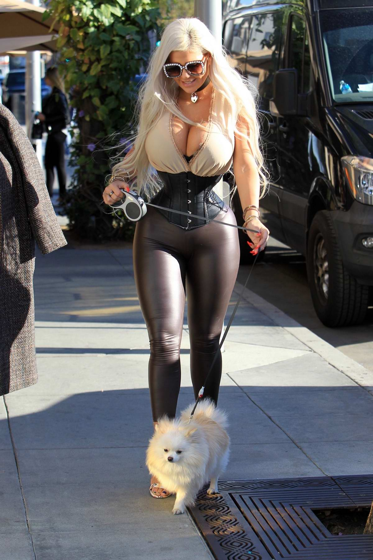 Sophia Vegas Wollersheim takes her Pomeranian dog along for some shopping in Beverly Hills, Los Angeles