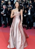 Bella Hadid at the premiere of 'Ash is Purest White' during 71st Cannes Film Festival in Cannes, France