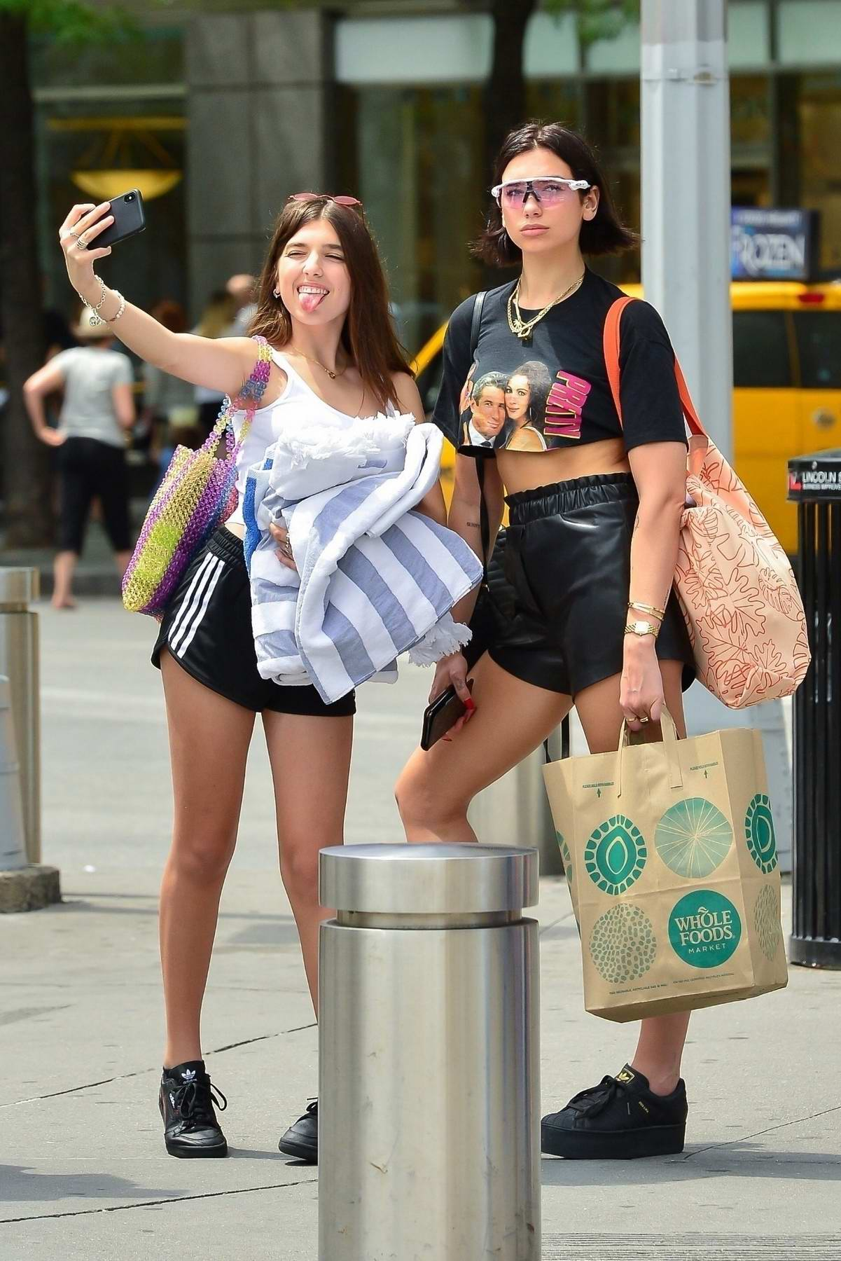 Dua Lipa have a picnic with sister Rina Lipa and friends at Central Park in New York City