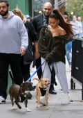 Ariana Grande steps out in her sweats to walk her dogs in New York City