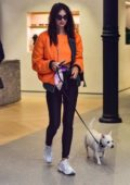 Emily Ratajkowski rocks a bright orange jacket and black leather tights while out to lunch with her dog in New York City