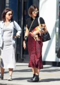 Katharine McPhee wears a black crop top and red animal print skirt while running errands with her dog in Los Angeles