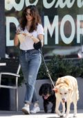Troian Bellisario grabs a green smoothie while out to walk her dogs in Los Angeles