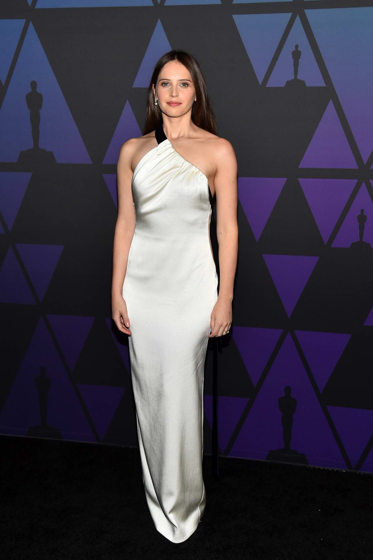 Felicity Jones attends the 10th Annual Governors Awards at the Academy Of Motion Picture Arts And Sciences' in Hollywood, California