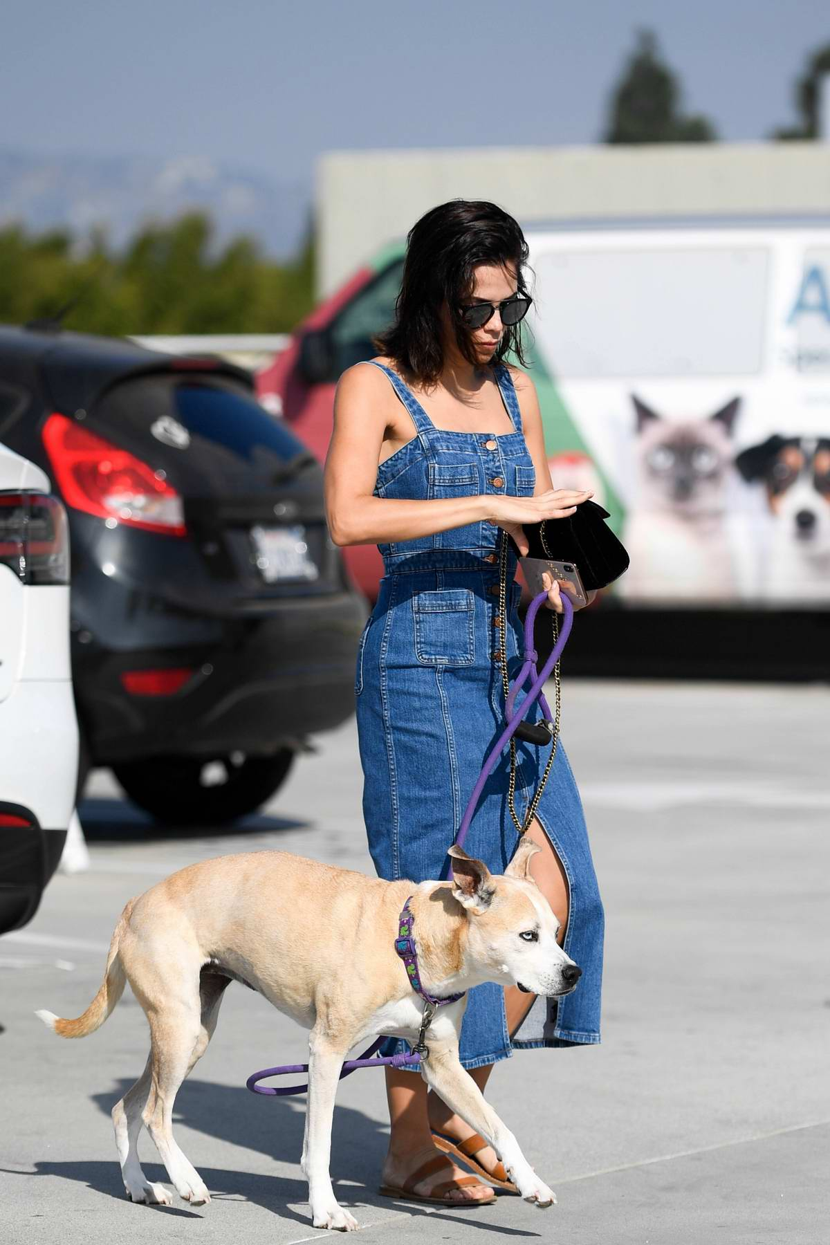 Jenna Dewan wears a denim overall dress as takes her dog out for a walk in Los Angeles