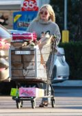 Hilary Duff shops for groceries at Ralph's supermarket in Los Angeles