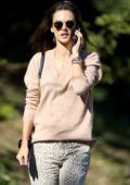 Alessandra Ambrosio chats on the phone while out in a light pink sweater and leopard print pants in Los Angeles