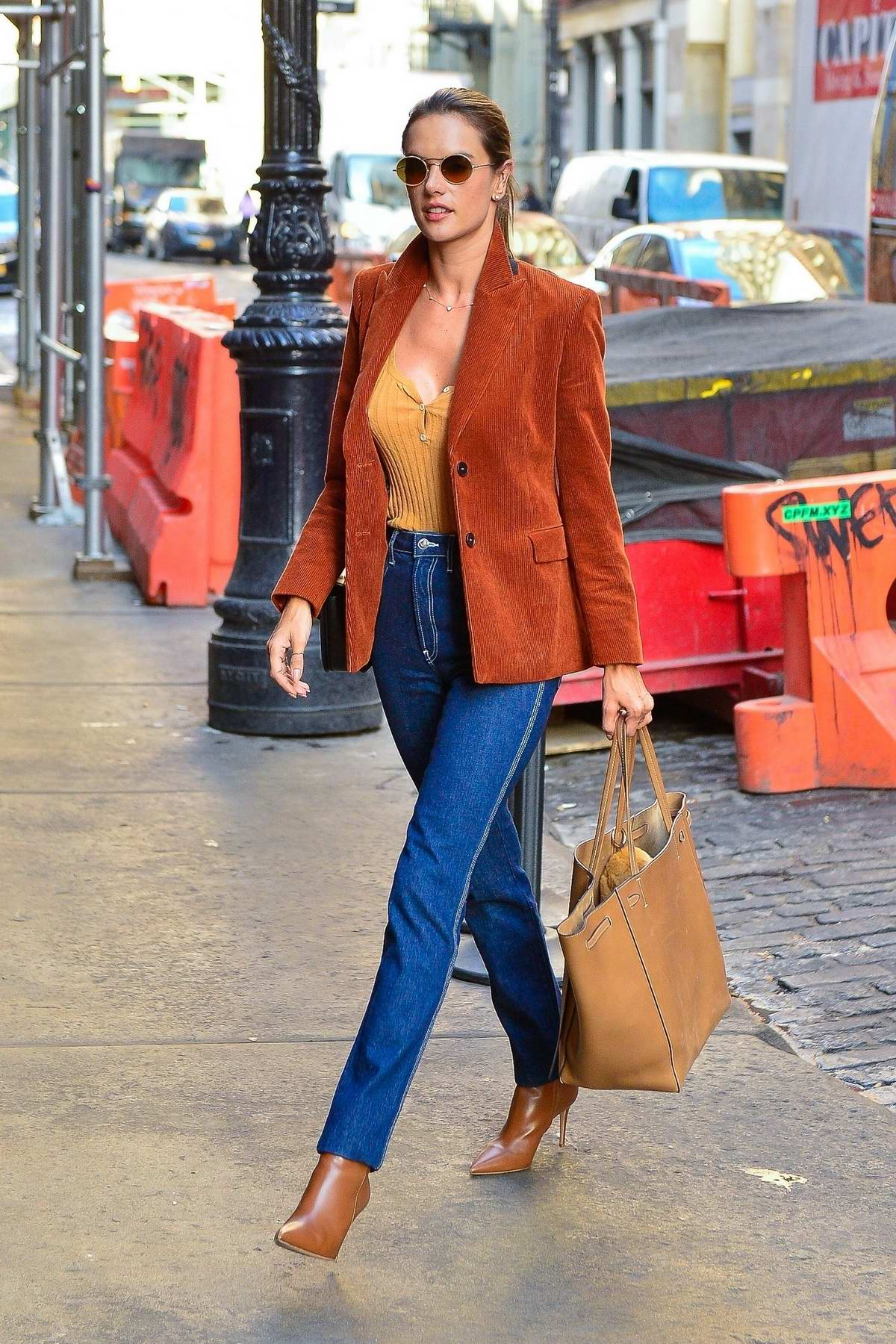 Alessandra Ambrosio looks colorful and chic while out in New York City