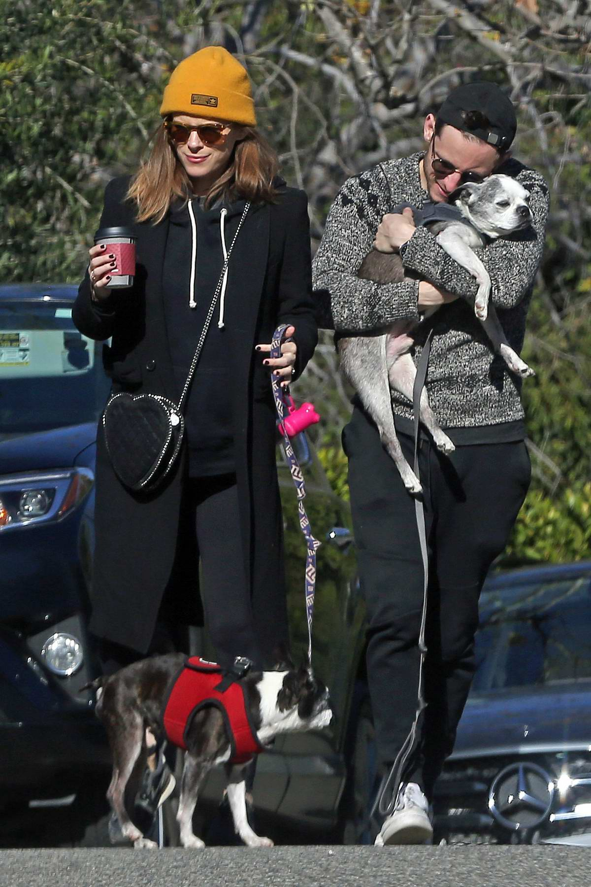 Kate Mara and Jamie Bell take their dogs for a walk in Los Angeles