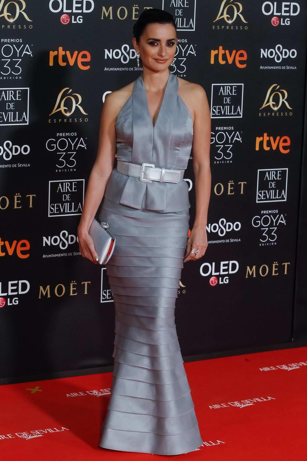 Penelope Cruz attends the Goya Cinema Awards at Palacio de Congresos y Exposiciones FIBES in Seville, Spain