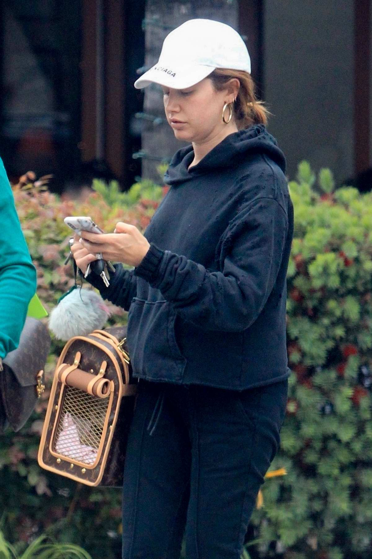 ashley tisdale goes shopping with her mom and dog in ...