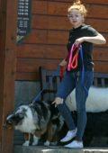 Ariel Winter takes her dogs to the vet in Sherman Oaks, California