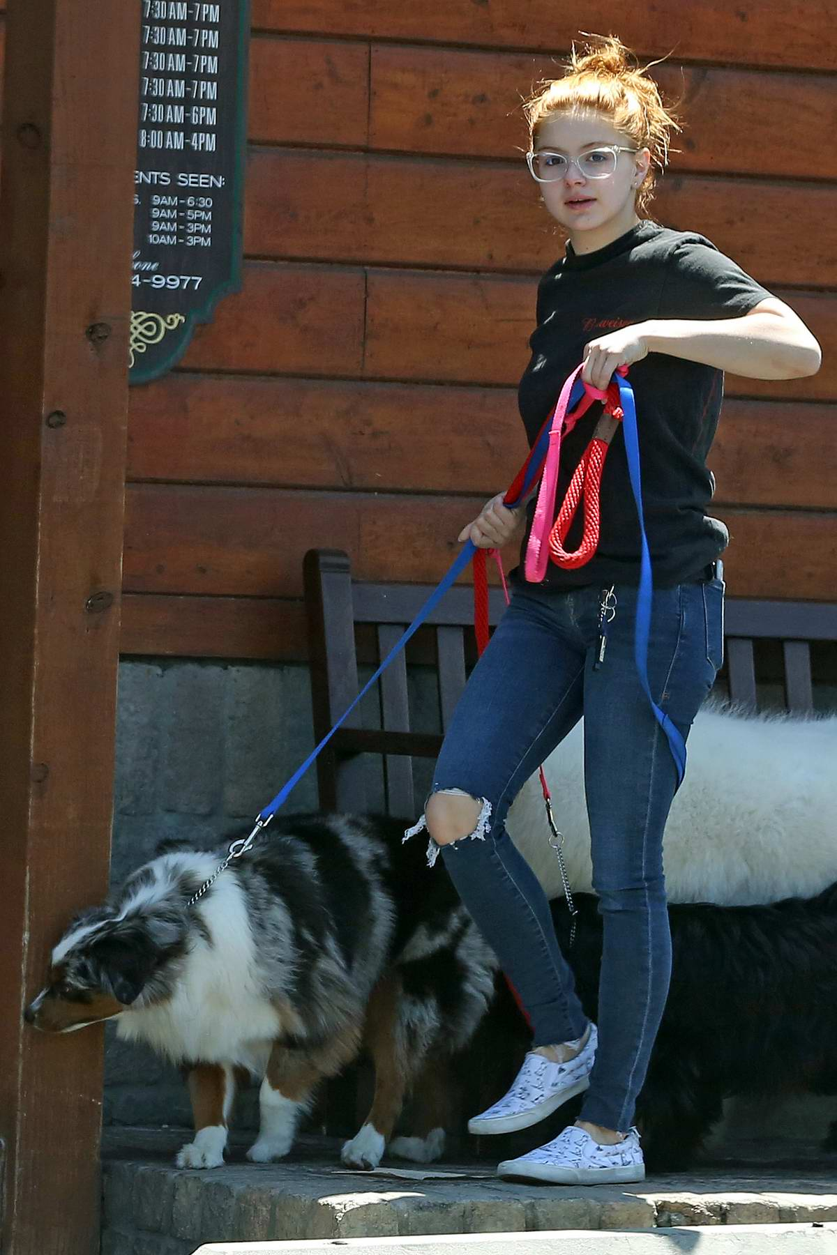 Ariel Winter takes her dogs to the vet in Sherman Oaks, California