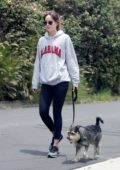 Dakota Johnson sports grey 'Alabama' hoodie and leggings for an afternoon hike with her dog in Hollywood, California
