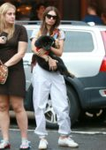 Emily Ratajkowski carries her pup as she leaves Sant Ambroeus in New York City