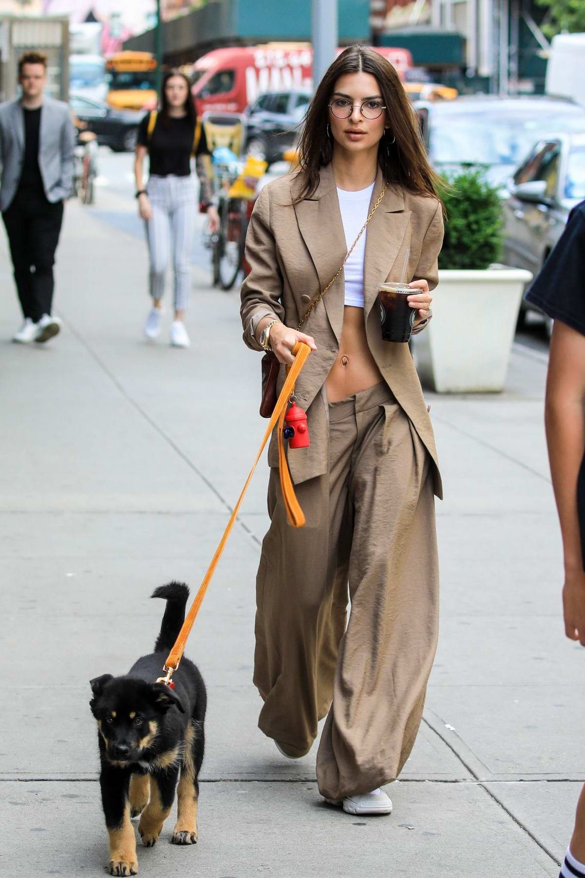 Emily Ratajkowski flaunts her abs in white crop top with an oversized suit while walking her cute pup in New York City