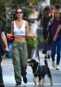 Emily Ratajkowski flaunts her toned abs in a white tank top while walking her dog in New York City