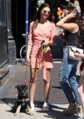 Emily Ratajkowski lets fans meet her pup during a stroll in New York City