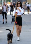 Emily Ratajkowski sports a white crop top and black legging shorts while out for a walk with her dog Colombo in New York City