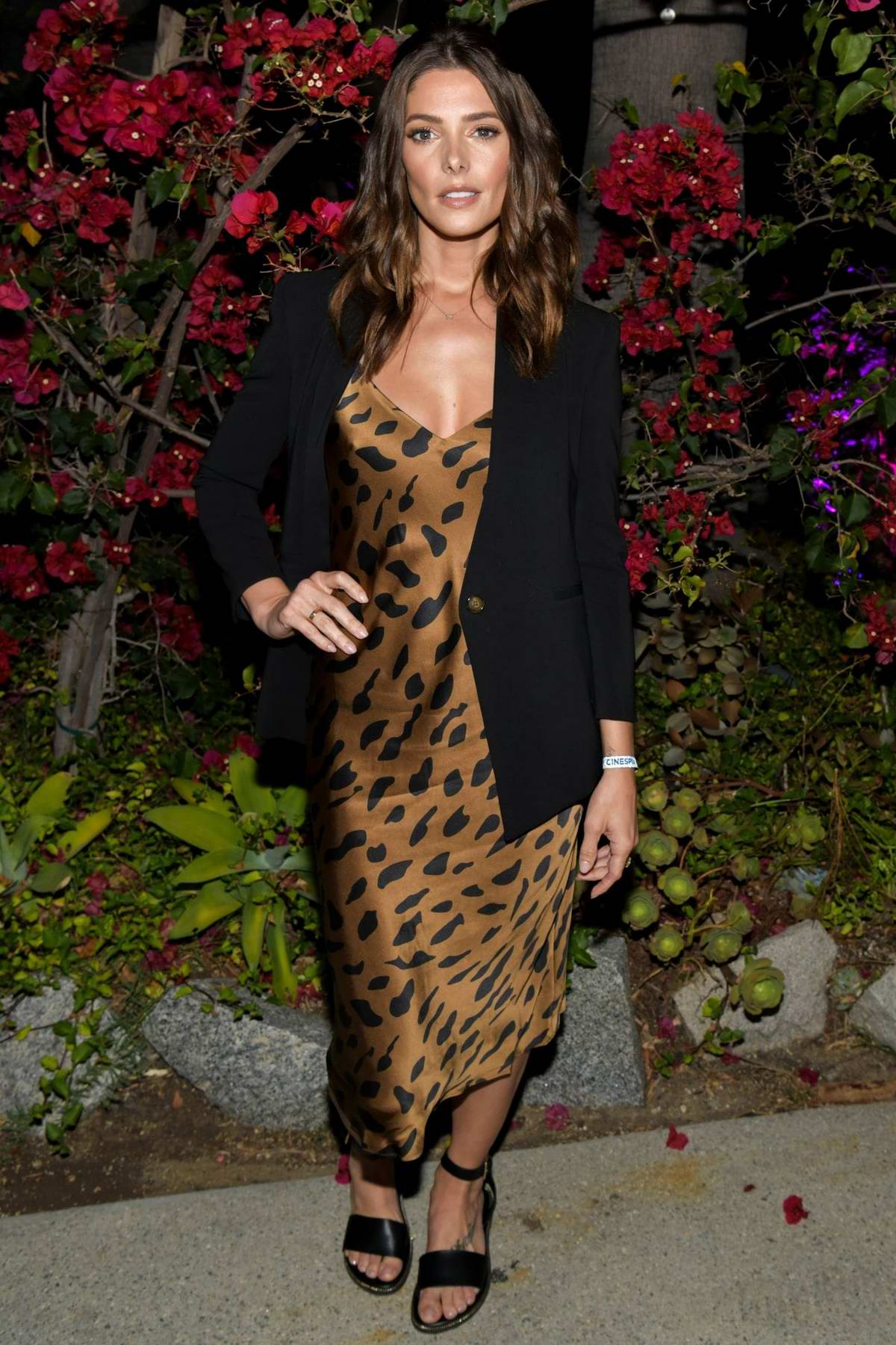 Ashley Greene attends the Cinespia's screening of 'Twilight' at the Hollywood Forever Cemetery in Los Angeles