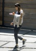 Dakota Johnson seen heading out with an apple and a bottle in Los Angeles