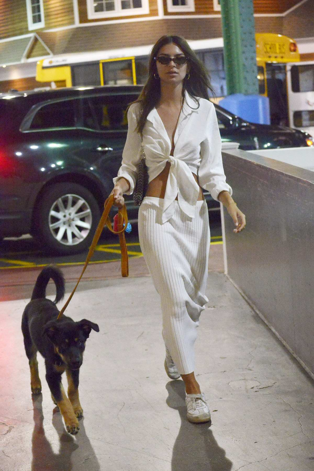 Emily Ratajkowski dons all-white as she steps out with her dog in New York City