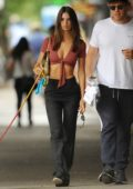 Emily Ratajkowski rocks a low cut crop top as she takes her dog for a walk in New York City