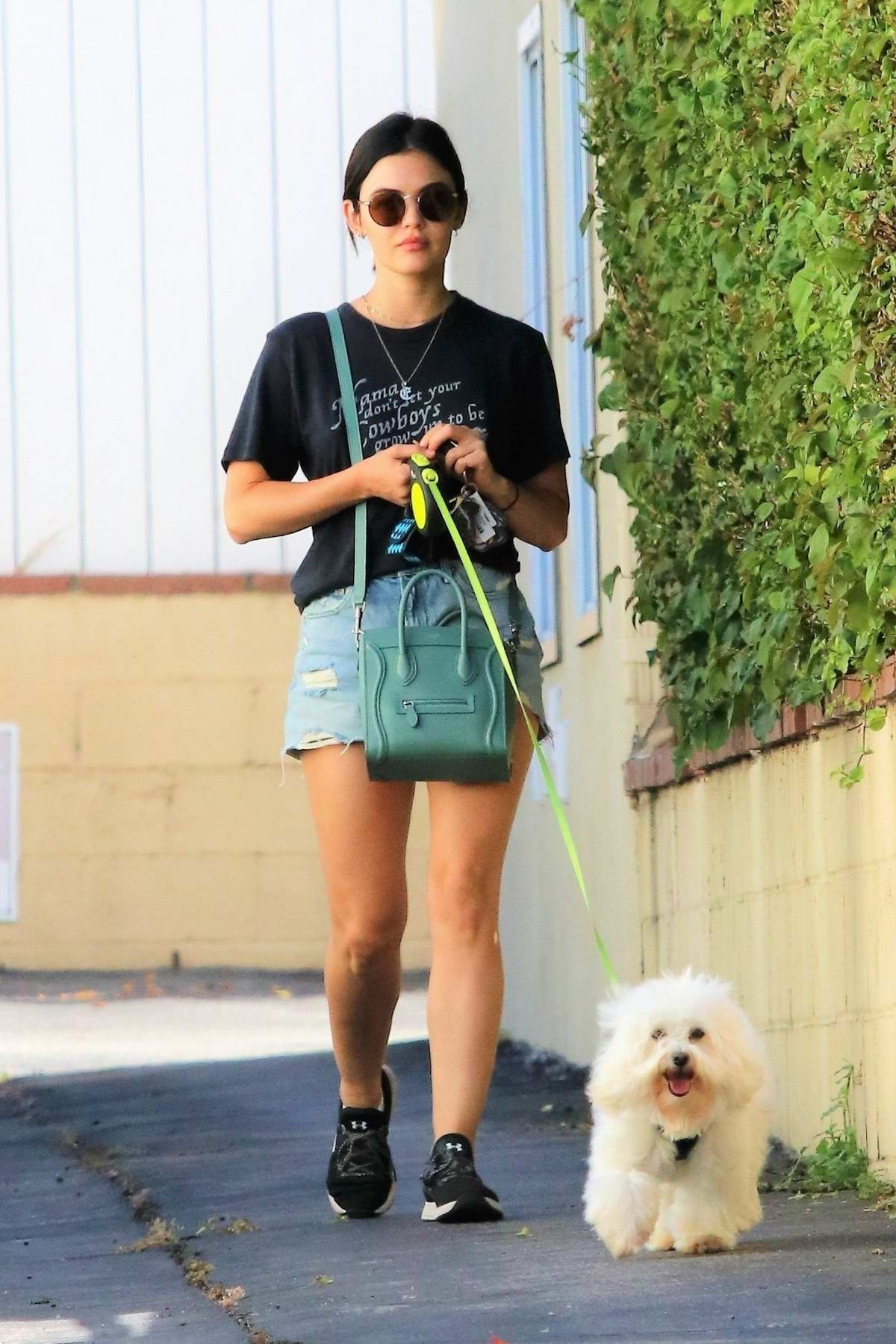 Lucy Hale picks up her dog Elvis from a dog hotel in Studio City, Los Angeles