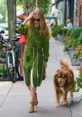 Amanda Seyfried looks lovely in a green dress as she leaves her apartment with her dog Finn in New York City