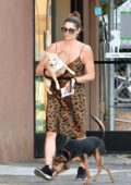 Ashley Greene spotted in an animal print dress as she stops by a pet store with her dogs in Studio City, Los Angeles