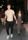 Camila Cabello and Shawn Mendes enjoy a dinner date at Extra Virgin in the West Village, New York