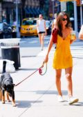 Emily Ratajkowski looks vibrant in a yellow dress as steps out to walk her dog in New York City