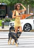 Emily Ratajkowski radiates in a yellow minidress as she hits the street with her pup in New York City